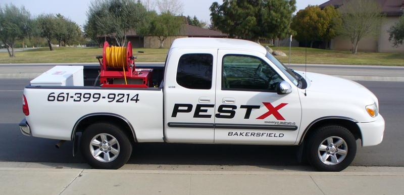 pest control Bakersfield, Pest X